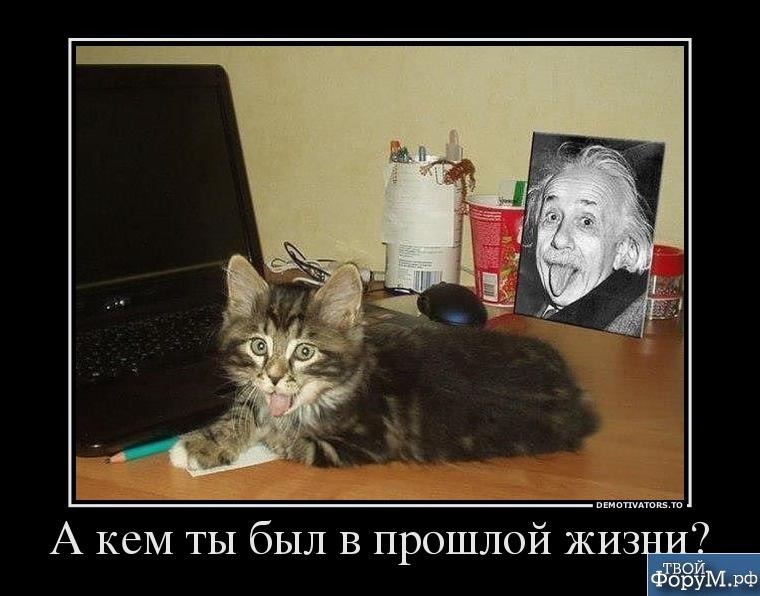 0973177_a-kem-tyi-byil-v-proshloj-zhizni.jpg