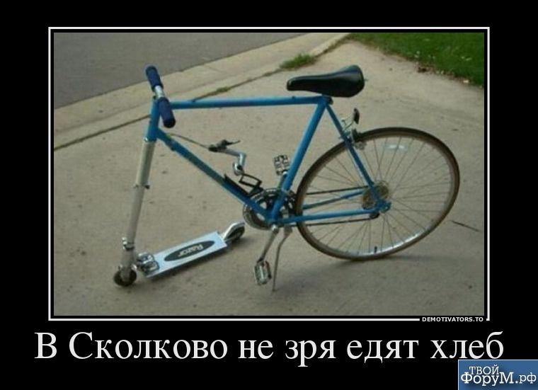 v-skolkovo-ne-zrya-edyat-hleb.jpg