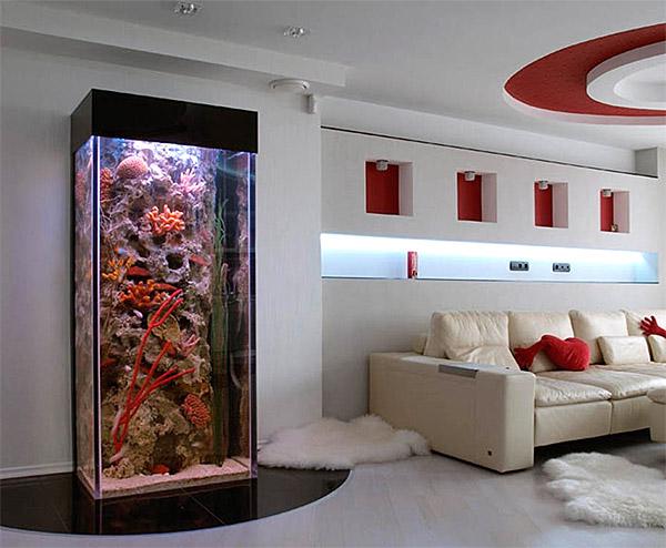 kak-krasivo-oformit-akvarium.jpg